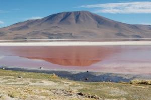 laguna-colorada-7