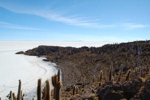 isla-del-pescado-salar-de-uyuni-11