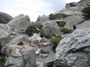 hike-to-cerro-fitz-roy-31
