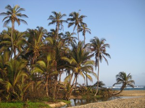 cabo-beach