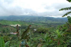 view-of-the-valley-from-our-hike-around-the-plantation-3