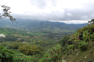 view-of-the-valley-from-our-hike-around-the-plantation-4