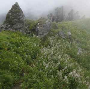 Hike-Day 2 (1)