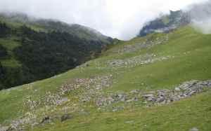 Hike-Day 2 (6)